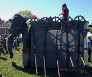 sw elephant
